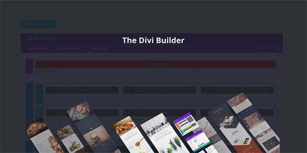 Divi Page Builder Layouts