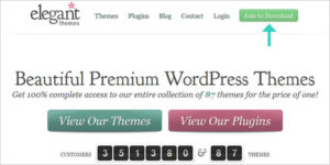 How to Buy Divi Theme