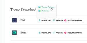 Download Divi ZIP File