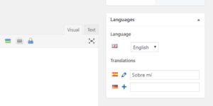 Languages Widget Polylang