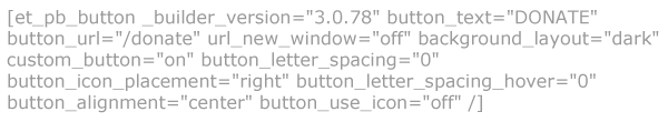 CTA Button Widget Code