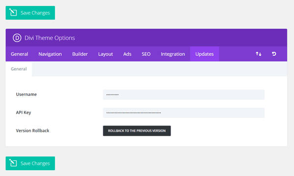 Divi Theme Options API Key
