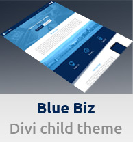Banner Blue Biz Child Theme