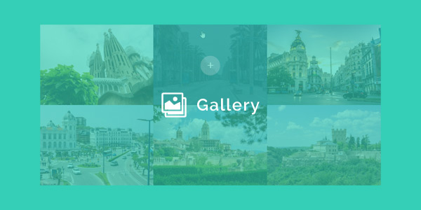 Divi Gallery Disable Lightbox