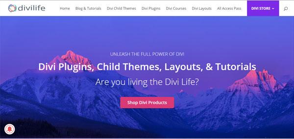 DiviLife Premium Child Themes